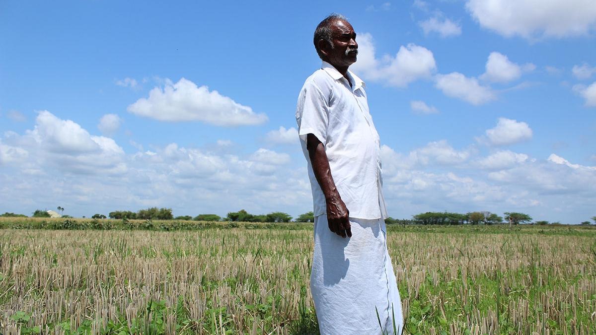 Bauern kämpfen gegen Dürre mit biologischen Anbaumethoden