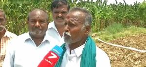 Tamil Nadu Farmer